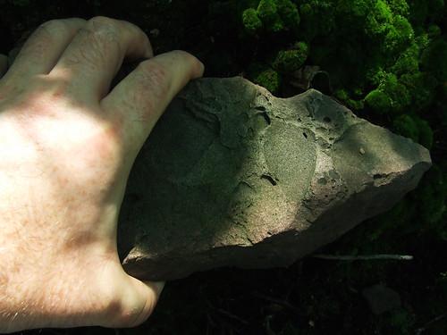 lifting cricket rock