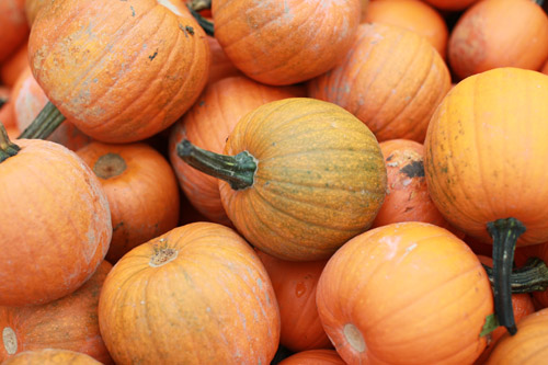 9_Pumpkin_soup