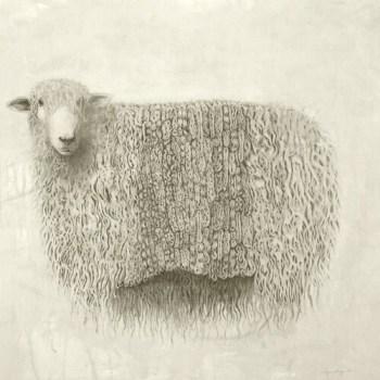 sheep print meagan donegan