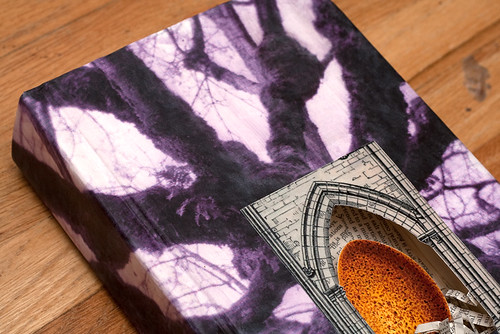 Altered Book-8