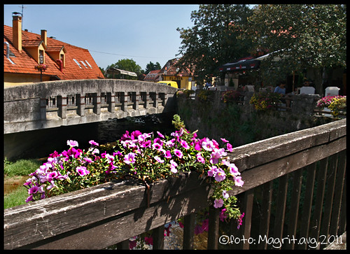Samobor, bridges