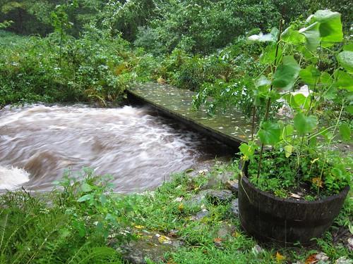 Bridge over stream morning of Irene