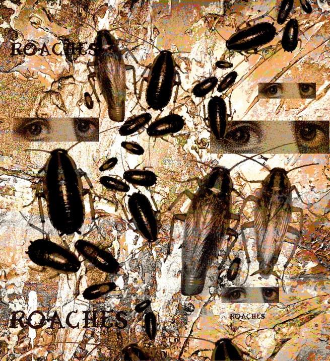 Roach nightmare