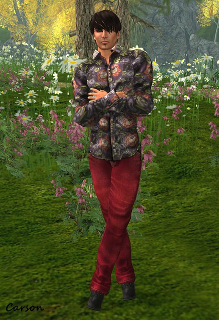 Connors BUCKLE BACK JEANS RB TWO-TONE, Connors PATTERNED SHIRT CAMELLIA, BF Dr. Rottens Boots  Cart Sale