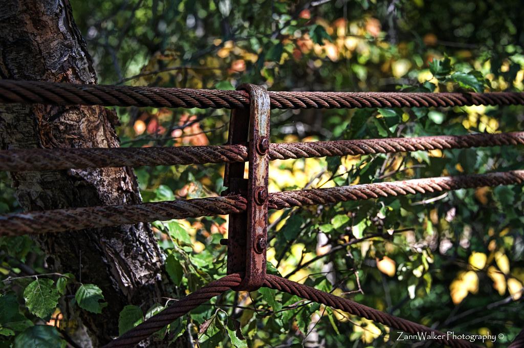 Tishomingo State Park Swinging Bridge 03