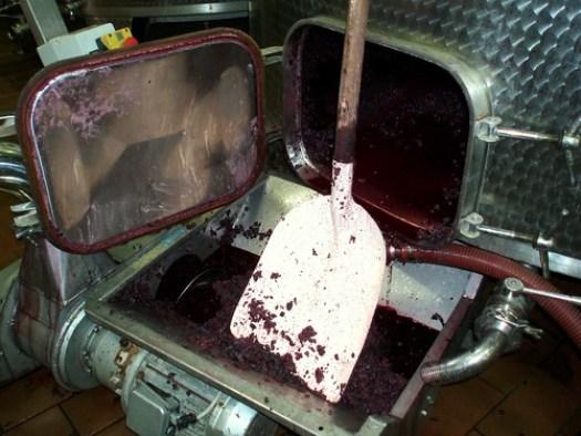 2011-10 Toskana-Reise der Deutschen Wein- und Sommelierschule 150 - Borgo Salcetino