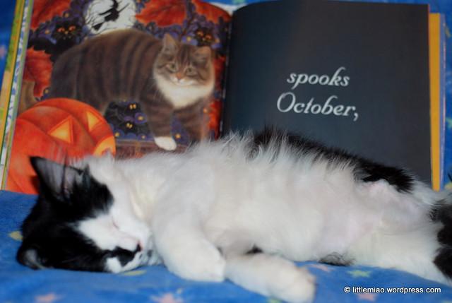 bookoctober 10-23-2011 1-34-56 PM