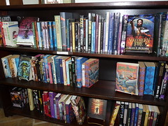 Teen and Young Adult Fiction