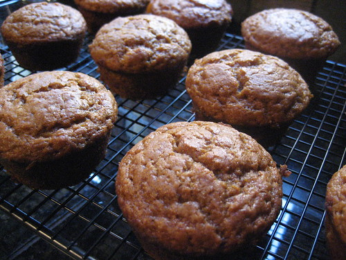 world's best pumpkin muffins