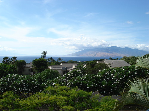 Maui 011