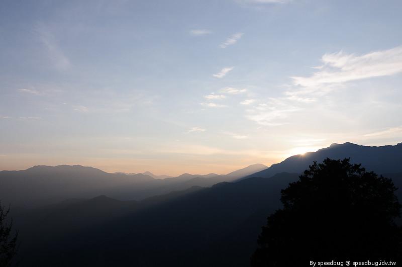 阿里山櫻花季14