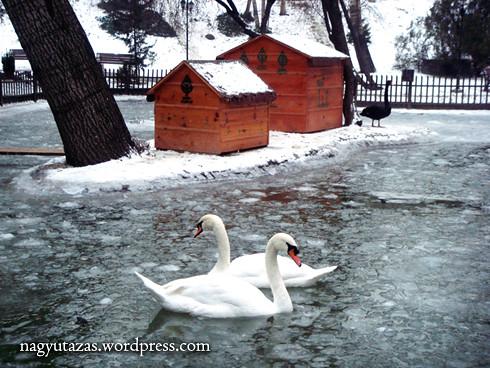 Gyönyörűséges, hóval borított ankarai park