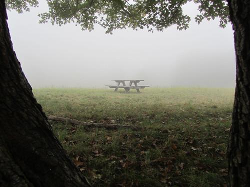 Am Himmel. Aber nicht in den Wolken. Nur Nebel.