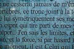 Parc d'Egmont - Texte de M.Yourcenar