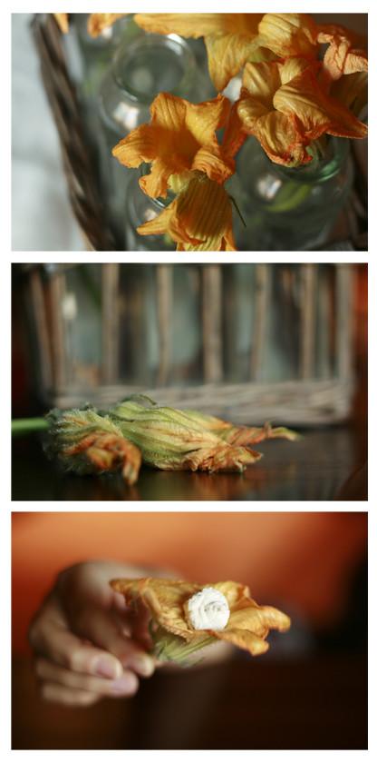 collage flors de carbassa