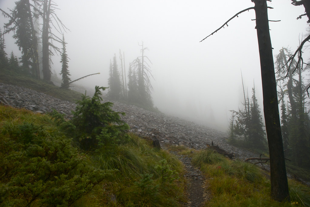 Baldy Mountain trail 340