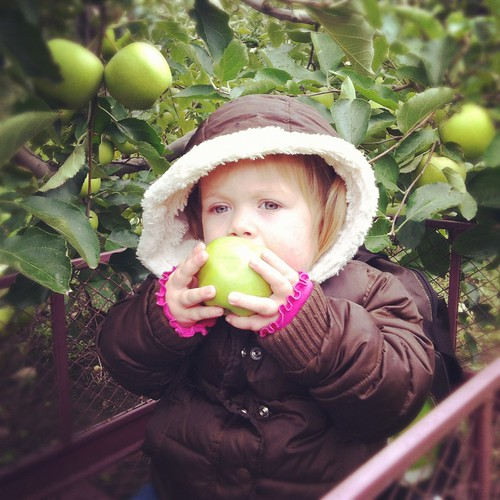 Teagan enjoying an apple while apple picking at Blackman Homestead Farm