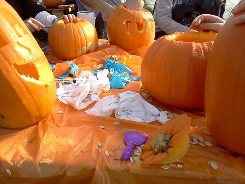 So many pumpkins!