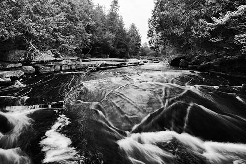 Along the Sturgeon River
