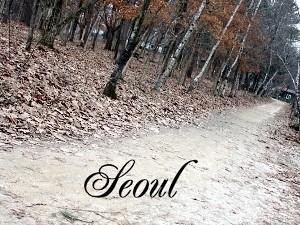 Namiseom Seoul Korea