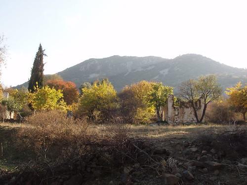 201111120066_Sandima