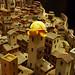 La tartaruga Tobia sulla torre di San Gimignano 1300