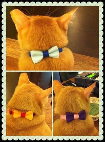 Dulcetkitteh GOOOD Collars