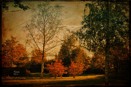 Herbst im Bugapark