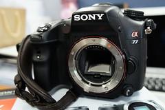 Sony a77 DSLT (DSLR)