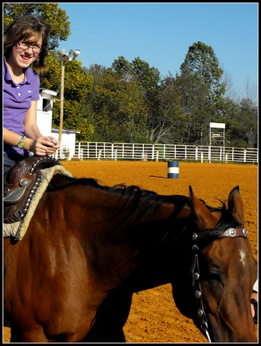 Horses 17 retouched