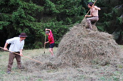 building a hay pike