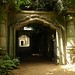 Highgate Cemetery: Egyptian Avenue