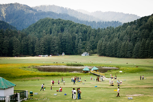 Khajiyar Meadow, Himachal Pradesh