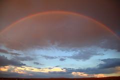 IWV Rainbow
