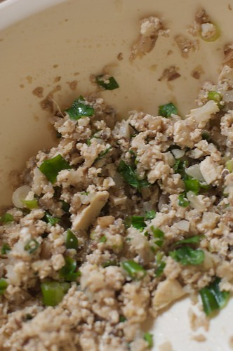 Shitake mushroom, water chestnut and ginger dumpling
