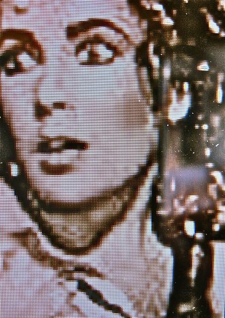 """Illustrazione per """"Avvertenze"""", di Caterina di Padova (Liz Taylor in The Taming of the Shrew, 1967)"""