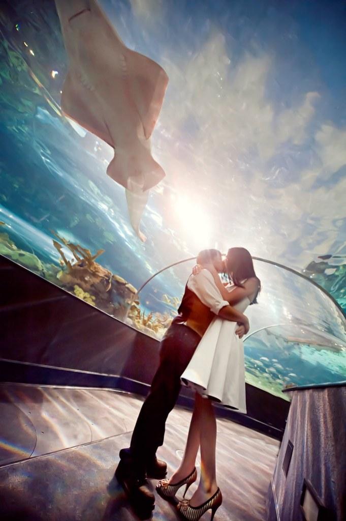 Aquarium Kisses