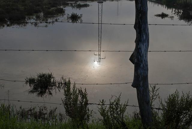 El sol se refleja en una laguna en las marismas del Guadalquivir