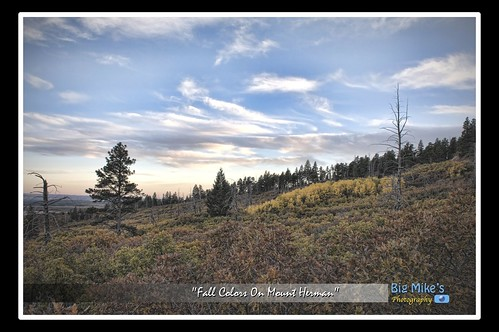 Fall Colors on Mount Herman by Big Mike's Photography