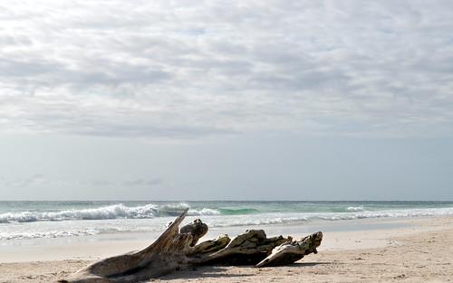 Tulum breakfast by the beach (13)