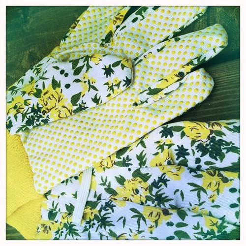 garden gloves from Doug