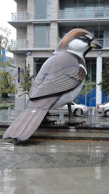 flat k rides sparrow