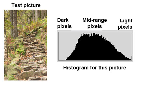 An even distribution of the bars in the middle of the histogram indicates a good exposure in the mid-range of brightness.