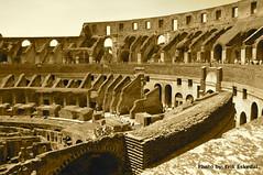 Colosseum 14