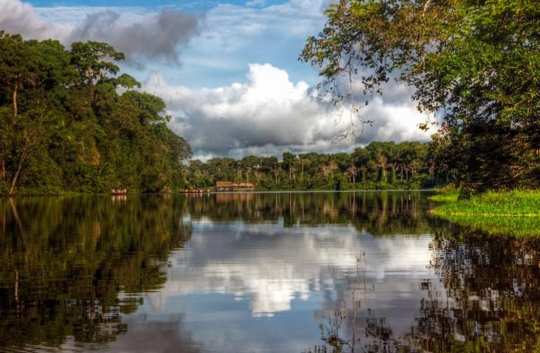 marasha reserve amazon
