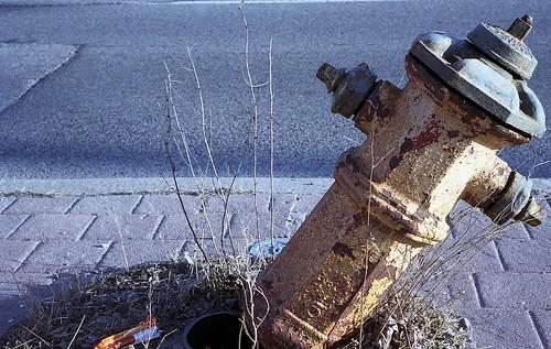 Broken Hydrant, North Toronto