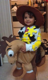 Toy Story Woody & Bullseye halloween costume | Flickr ...
