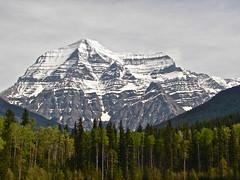 DSC03308 Mt. Robson