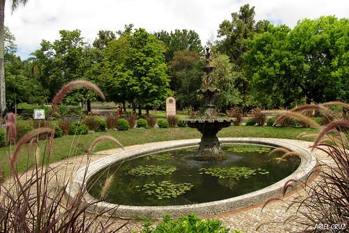 365-11 | Jardín Botánico Profesor Atilio Lombardo - Botanical Garden Professor Atilio Lombardo (Montevideo) |