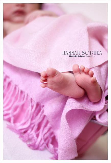 Introducing Hannah Sophea | Newborn Portraiture
